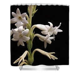 Tuberose Shower Curtain