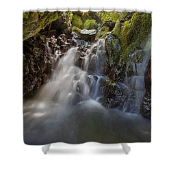 Tucked Away In Gorton Creek Shower Curtain by David Gn