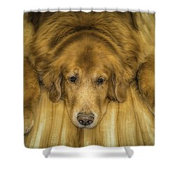 Tucker Shower Curtain by Marion Johnson