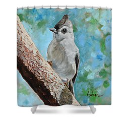 Tufted Titmouse #1 Shower Curtain