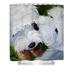 Tug Of War Shower Curtain by Mary Sparrow