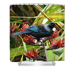 Tui In Flax Shower Curtain by Angela DeFrias