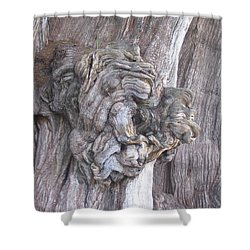 Tule Tree Spirit Shower Curtain by Michael Peychich