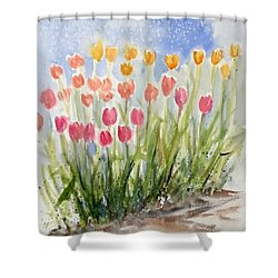Tulip Abunda Shower Curtain