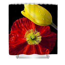 Tulip And Iceland Poppy Shower Curtain by Garry Gay