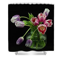 Tulip Bouqet Shower Curtain
