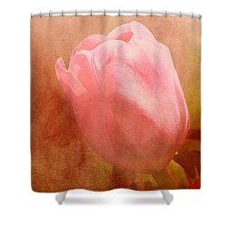Tulip Dream Shower Curtain