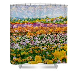 Shower Curtain featuring the photograph Tulip Dreams by Tom Vaughan