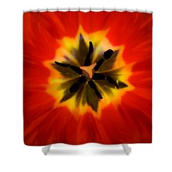 Tulip Explosion Kaleidoscope Shower Curtain by Teresa Mucha