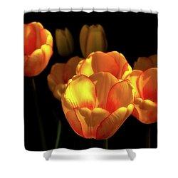 Tulip Festival Participants Shower Curtain