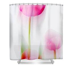 Tulip Impressions  Shower Curtain