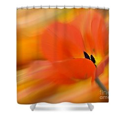 Tulip In Motion Shower Curtain