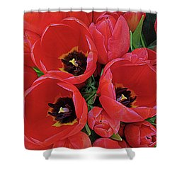Tulip Parade Shower Curtain
