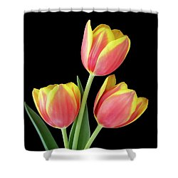 Tulip Passion Shower Curtain