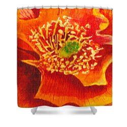 Tulip Prickly Pear Shower Curtain