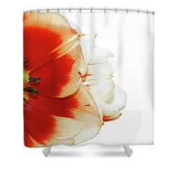 Tulip Statement Shower Curtain
