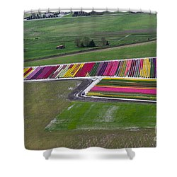 Tulip Town Aerial Shower Curtain