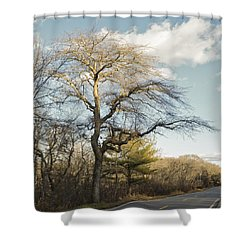 Tupelo Tree Shower Curtain