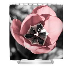 Tulip Up Close Shower Curtain