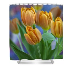 Tulips 2015 #1 Shower Curtain