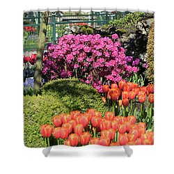 Tulips And Rhodies Shower Curtain