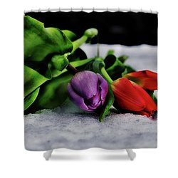 Tulips And Snow Shower Curtain