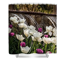 Shower Curtain featuring the photograph Tulips And Waterfall by Jay Stockhaus