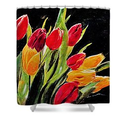 Tulips Colors Shower Curtain