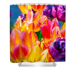 Shower Curtain featuring the photograph Tulips Enchanting 40 by Alexander Senin