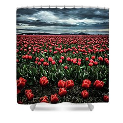 Tulips Forever Shower Curtain