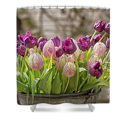 Shower Curtain featuring the photograph Tulips In A Bucket by Patricia Hofmeester