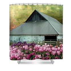 Tulips In Skagit Valley Shower Curtain