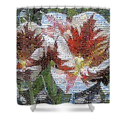 Tulips In Springtime Photomosaic Shower Curtain by Michelle Calkins