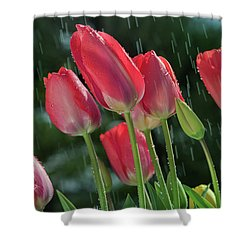 Shower Curtain featuring the photograph Tulips In The Rain by William Lee