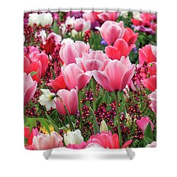 Shower Curtain featuring the photograph Tulips by James Eddy