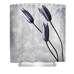 Tulips Shower Curtain by Jacky Gerritsen