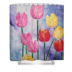 Tulips - Red-yellow-pink Shower Curtain