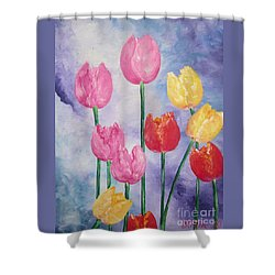 Ten  Simple  Tulips  Pink Red Yellow                                Flying Lamb Productions   Shower Curtain