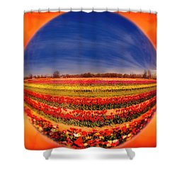 Shower Curtain featuring the photograph Tulips Reflections And Refractions by Susan Candelario