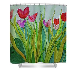 Tulips Shower Curtain by Teresa Tilley