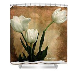 Tulips Three Shower Curtain