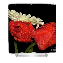 Shower Curtain featuring the photograph Tulips With Gerber by Elvira Ladocki