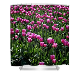 Shower Curtain featuring the photograph Purple Tulips by Peter Simmons