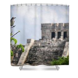 Tulum Mayan Ruins Shower Curtain