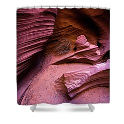 Shower Curtain featuring the photograph Tumbleweed In The Canyon by Stephen Holst