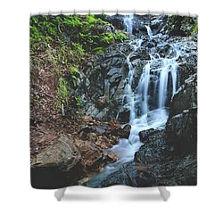 Tumbling Down Shower Curtain by Laurie Search