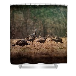 Turkey Day At Grandpas Farm Shower Curtain by Jai Johnson