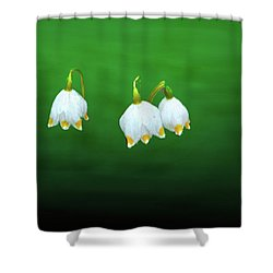 Turkey-eggs On Green #g2 Shower Curtain