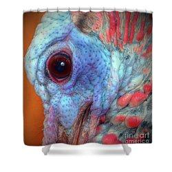 Turkey Head Shot Shower Curtain by Kim Pate