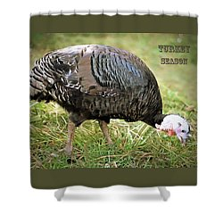 Shower Curtain featuring the photograph Turkey Season by Marion Johnson